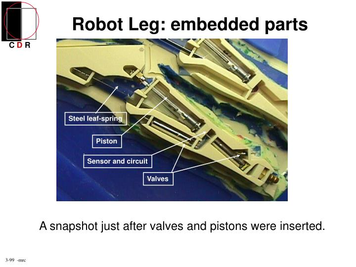 Robot Leg: embedded parts
