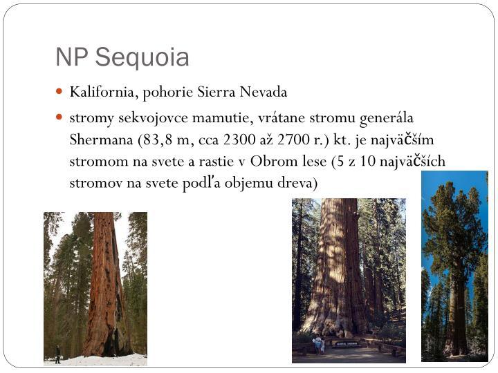 NP Sequoia