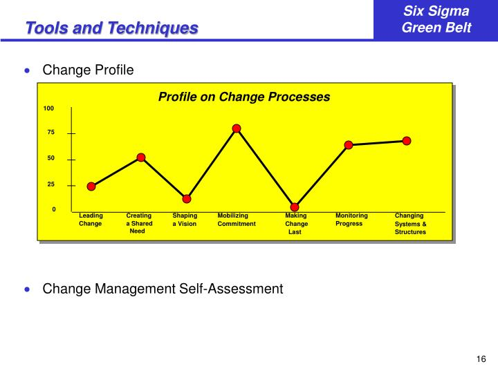 Profile on Change Processes