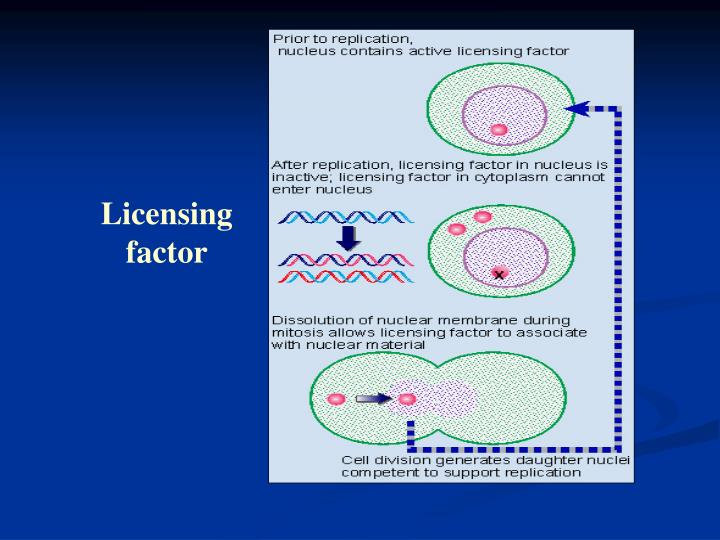 Licensing factor