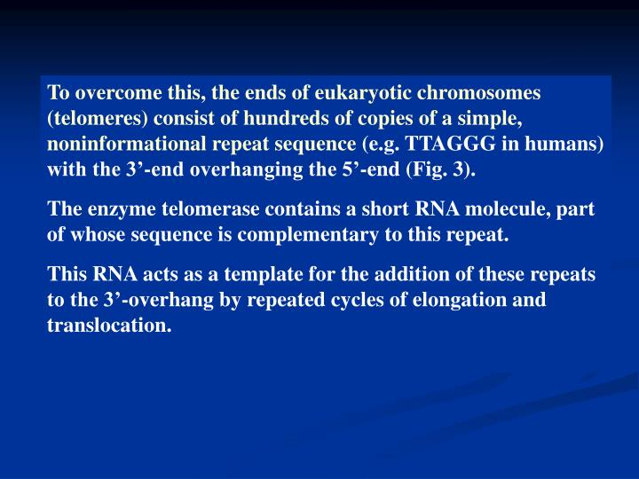 To overcome this, the ends of eukaryotic chromosomes (telomeres) consist of hundreds of copies of a simple, noninformational repeat sequence