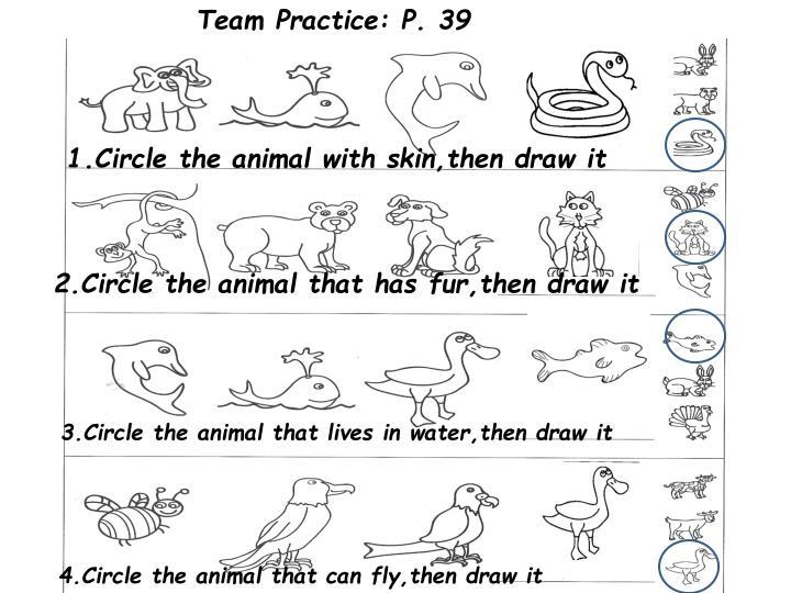 Team Practice: P. 39