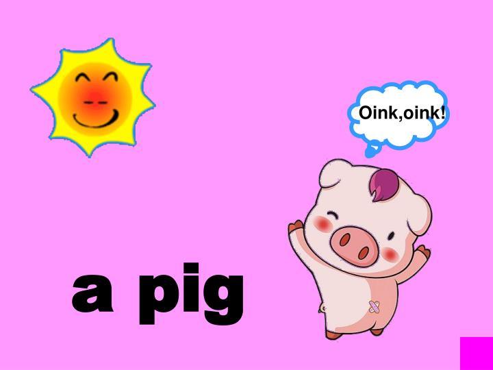 Oink,oink!
