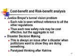 cost benefit and risk benefit analysis