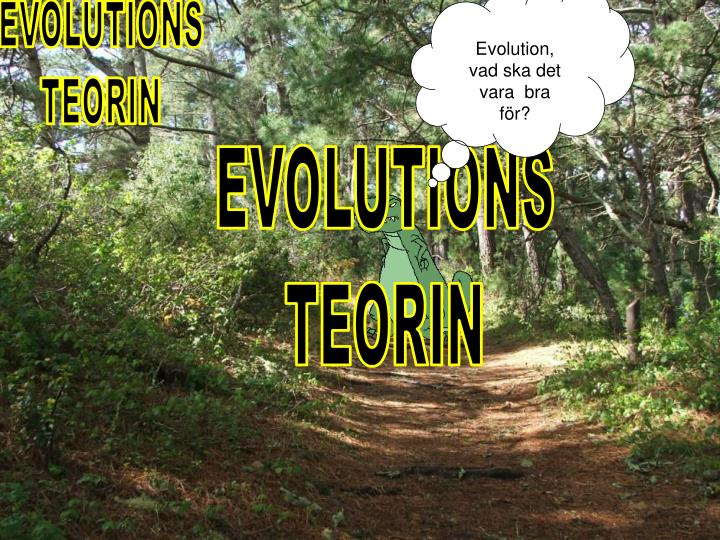 Evolution,