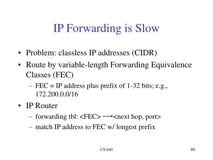 IP Forwarding is Slow
