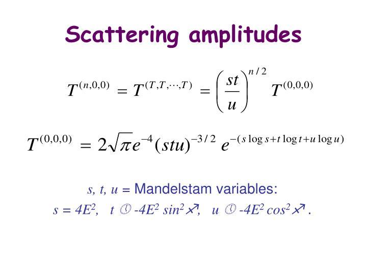 Scattering amplitudes