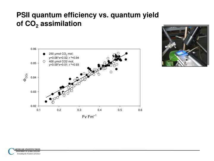 PSII quantum efficiency vs. quantum yield