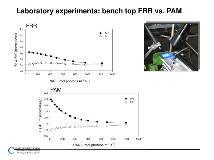 Laboratory experiments: bench top FRR vs. PAM