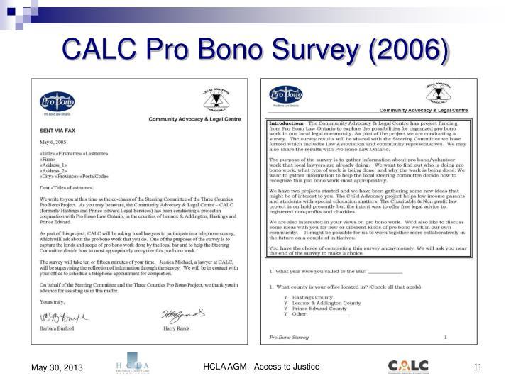 CALC Pro Bono Survey (2006)