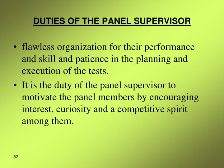 DUTIES OF THE PANEL SUPERVISOR