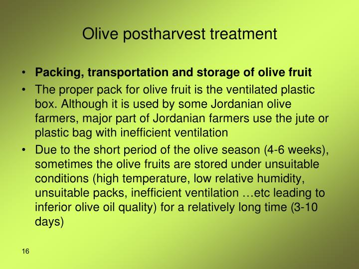Olive postharvest treatment