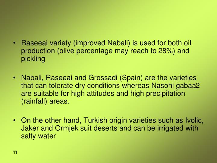 Raseeai variety (improved Nabali) is used for both oil production (olive percentage may reach to 28%) and pickling