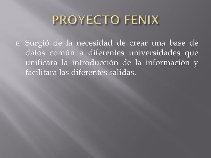 PROYECTO FENIX