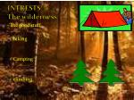 intrests the wilderness
