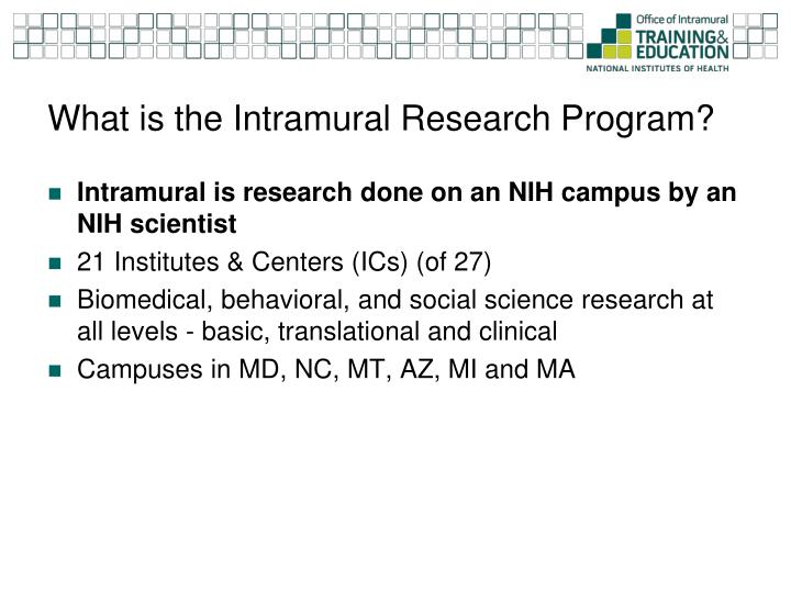 What is the Intramural Research Program?
