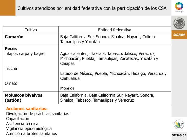 Cultivos atendidos por entidad federativa con la participación de los CSA