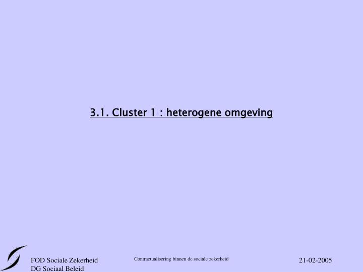 3.1. Cluster 1 : heterogene omgeving