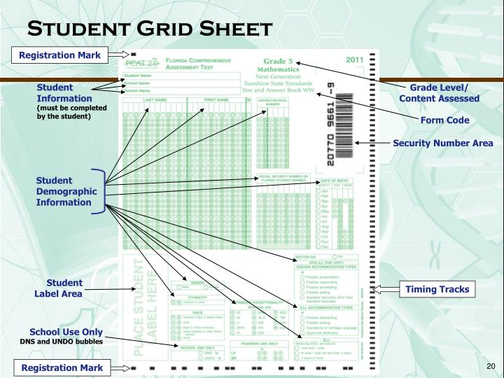 Student Grid Sheet