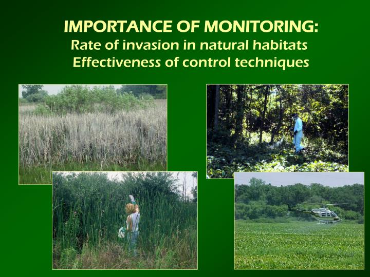 IMPORTANCE OF MONITORING: