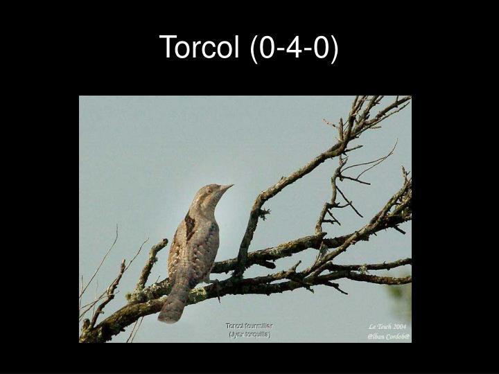 Torcol (0-4-0)
