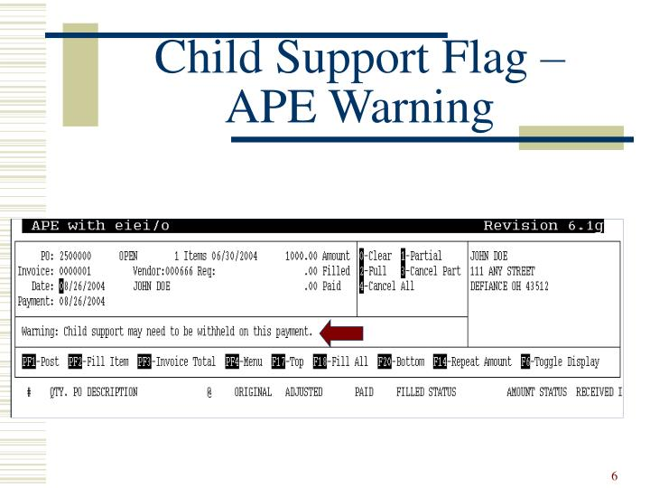 Child Support Flag – APE Warning