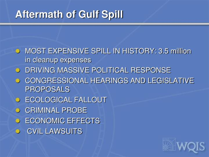 Aftermath of Gulf Spill