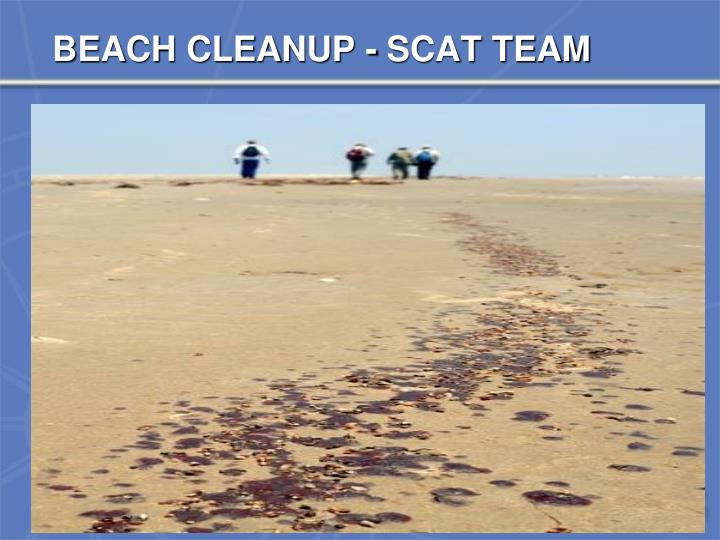 BEACH CLEANUP - SCAT TEAM