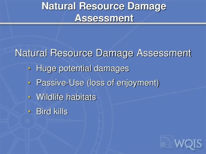 Natural Resource Damage Assessment
