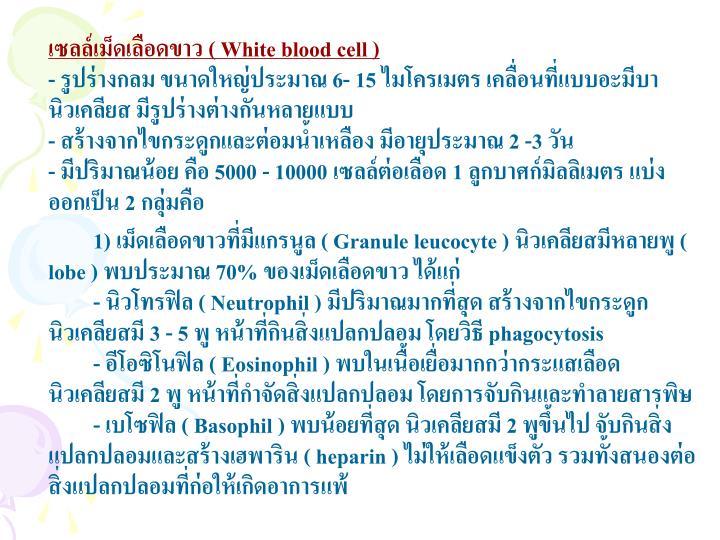 เซลล์เม็ดเลือดขาว (
