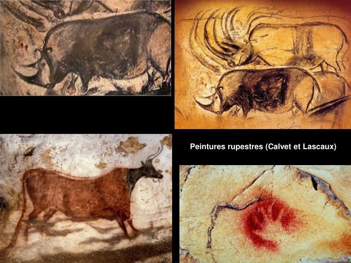 Peintures rupestres (Calvet et Lascaux)