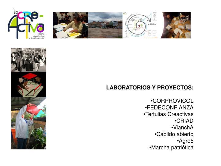 LABORATORIOS Y PROYECTOS: