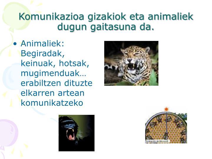 Komunikazioa gizakiok eta animaliek dugun gaitasuna da.