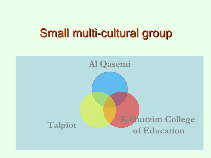 Small multi-cultural group