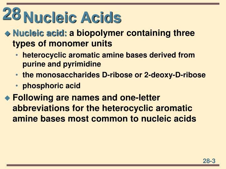 Nucleic Acids
