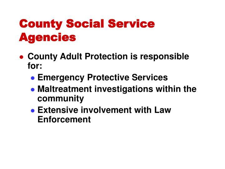 County Social Service Agencies
