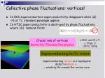 collective phase fluctuations vortices1