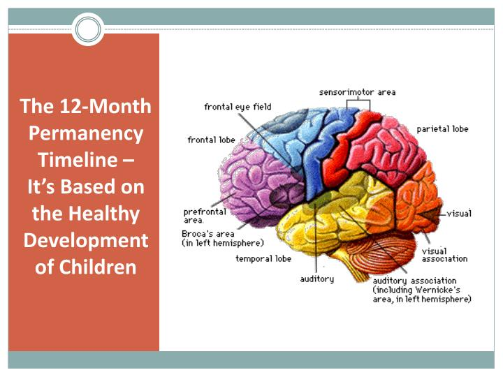 The 12 month permanency timeline it s based on the healthy development of children