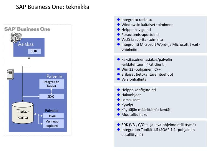 SAP Business One: