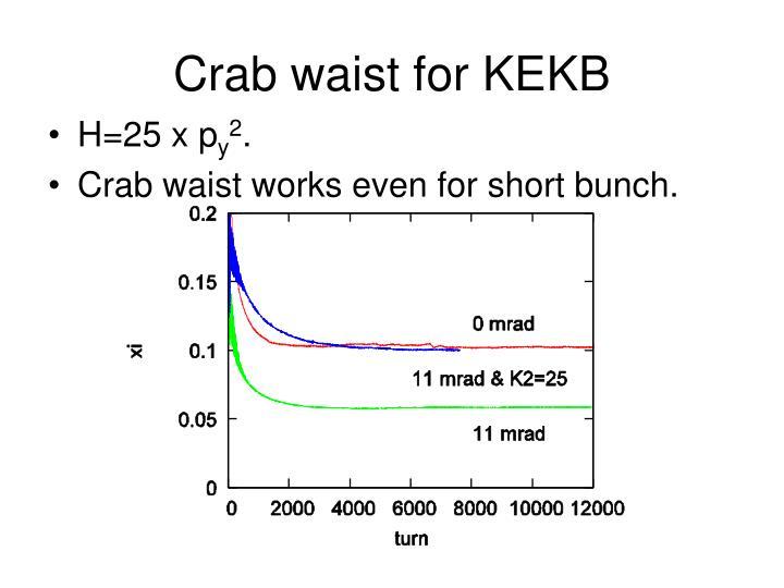 Crab waist for KEKB