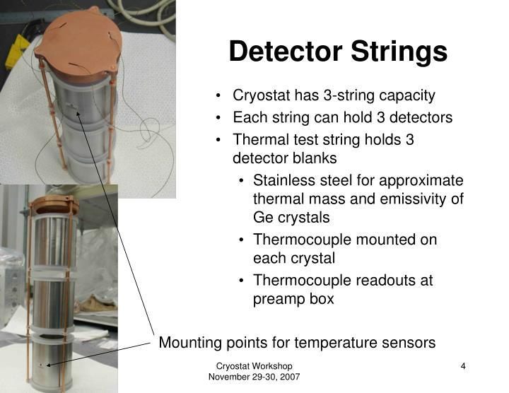 Detector Strings