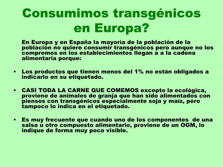 Consumimos transgénicos en Europa?