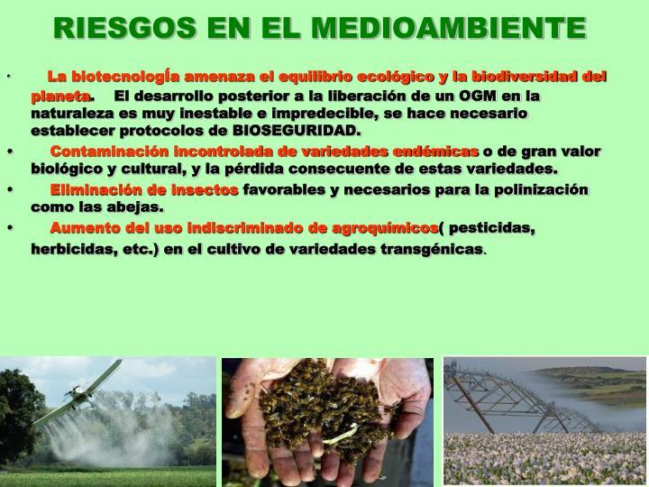 RIESGOS EN EL MEDIOAMBIENTE