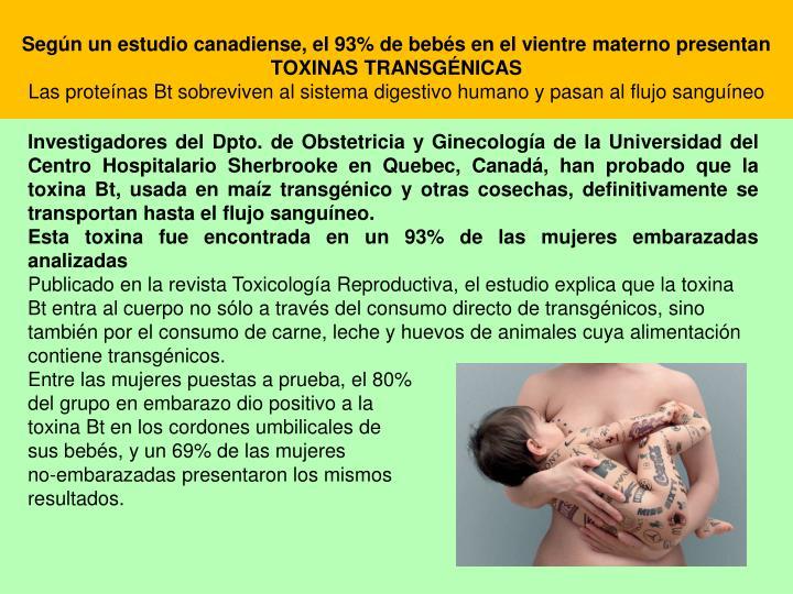 Según un estudio canadiense, el 93% de bebés en el vientre materno presentan TOXINAS TRANSGÉNICAS