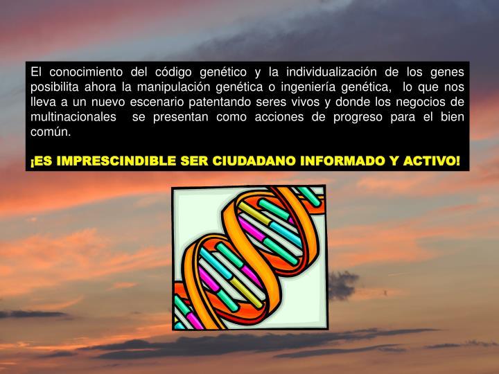 El conocimiento del código genético y la individualización de los genes posibilita ahora la manipulación genética o ingeniería genética,  lo que nos lleva a un nuevo escenario patentando seres vivos y donde los negocios de multinacionales  se presentan como acciones de progreso para el bien común.