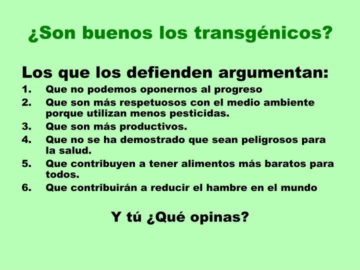 ¿Son buenos los transgénicos?