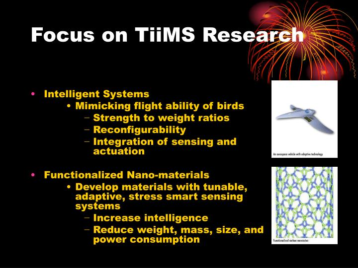 Focus on TiiMS Research