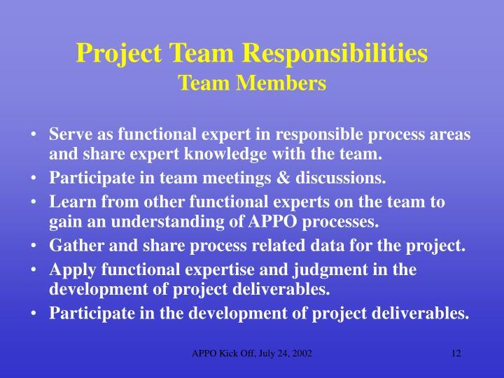 Project Team Responsibilities