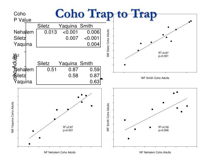 Coho Trap to Trap