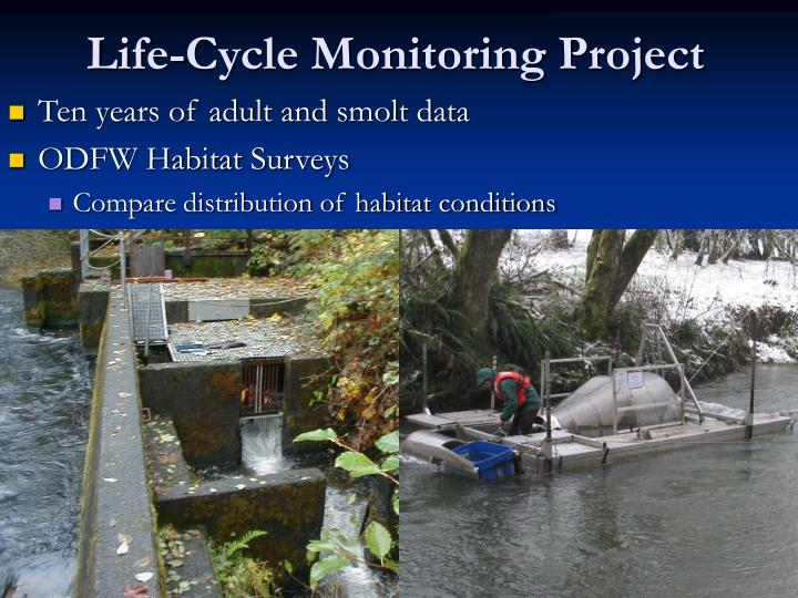 Life cycle monitoring project